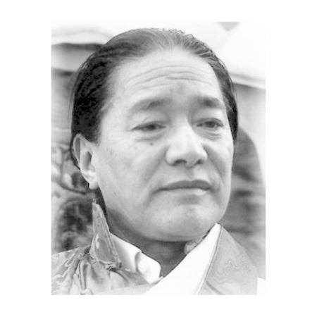 HH Dudjom RInpoche Jigdral Yeshe Dorje བདུད་འཇོམས་འཇིགས་བྲལ་ཡེ་ཤེས་རྡོ་རྗེ